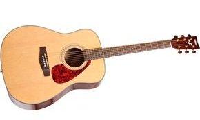 Yamaha f335 guitar